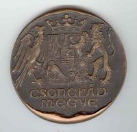 Csongrád megyei Önkormányzat alkotói díja